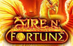 Online gokkast: Fire 'N Fortune videoslot