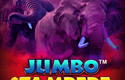 Videoslot review: Jumbo Stampede iSoftBet