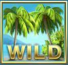 Mega Fortune Dreams gamereview - het wildsymbool
