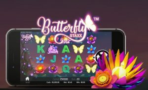 Speel de videoslot Butterfly Staxx met gratis spins
