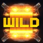 Wildsymbool