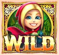 Wildsymbool