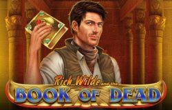 onlinecasino.nl videoslot Book of Dead van Play n Go
