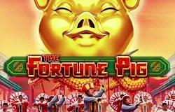 Online gokkast: The Fortune Pig iSoftBet