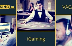onlinecasino.nl werken in online casino iGaming business